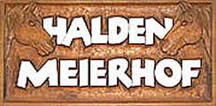 Haldenmeier Logo