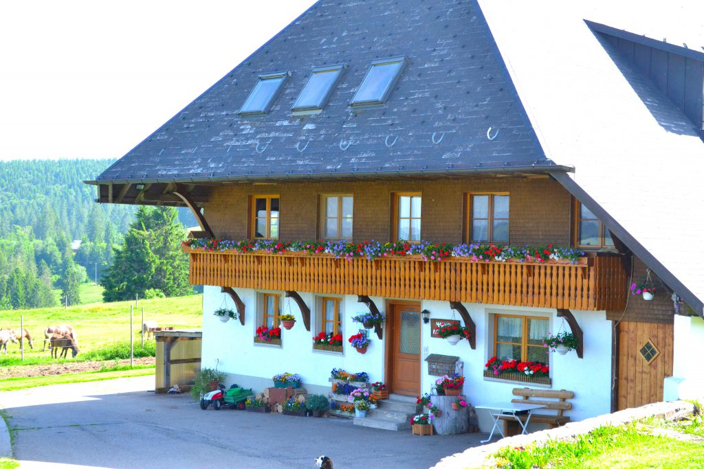 Front-Seite Haldenmeierhof